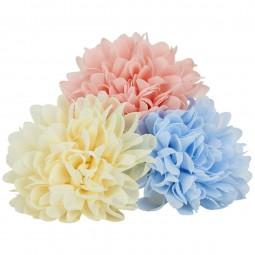 Creamie Blüten, Mädchen